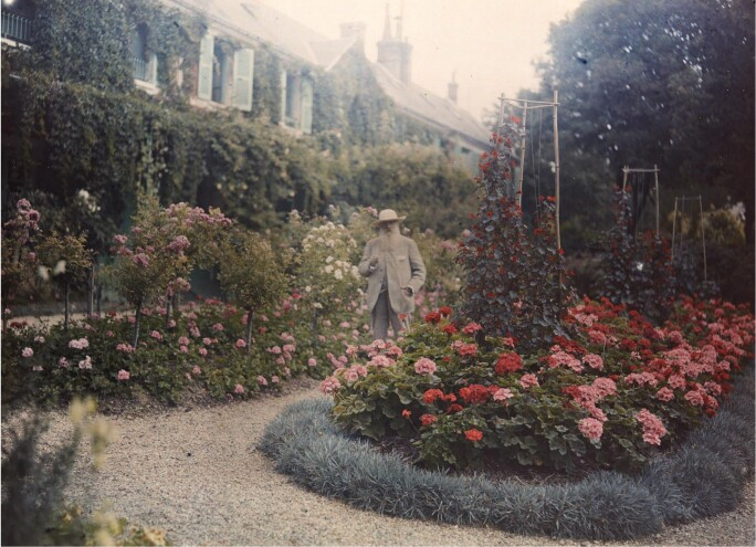 A colored photograph of Monet standing in his lush garden at Giverny with roses abounding.