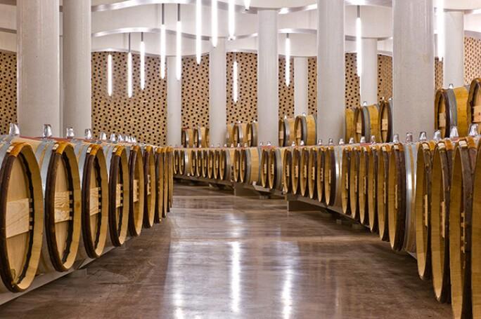 wine-futures-barrels-2.jpg