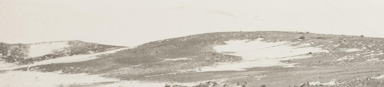 antarctic-1920.jpg