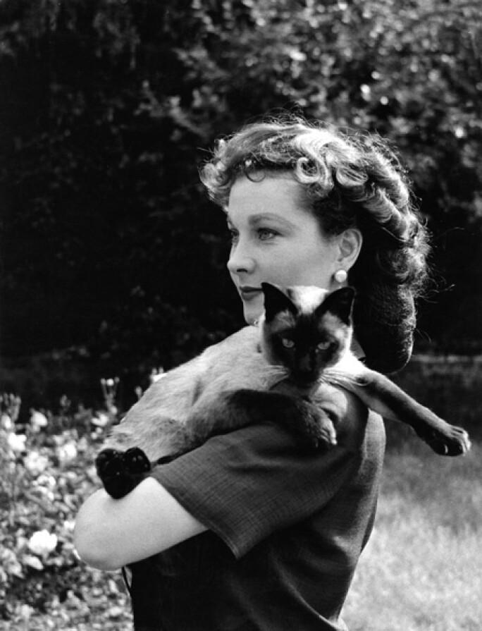 vivien-leigh-cats-actress.jpg