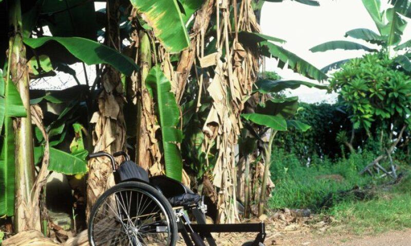 Motivation Rough Terrain Wheelchair, 2005