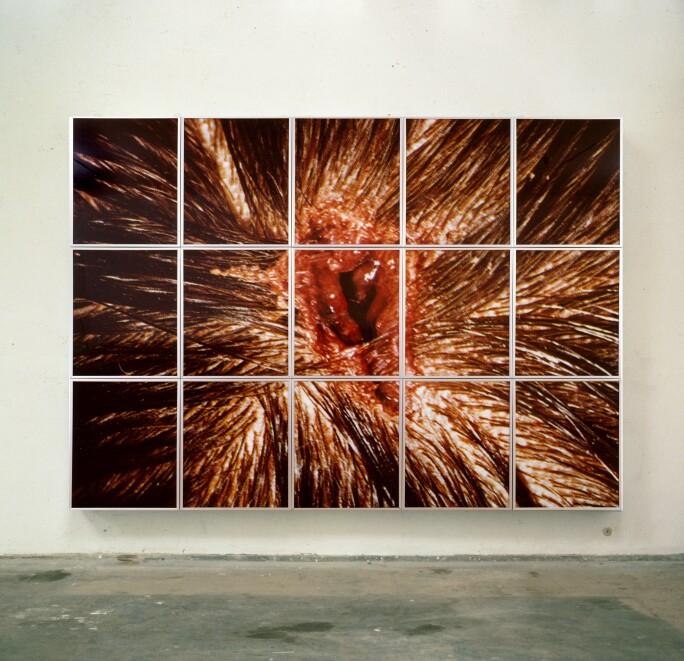 Matt Collishaw, Bullet Hole 1988