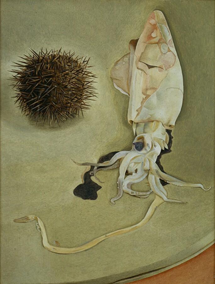 lucian-freud-sea-urchin-harris.jpg