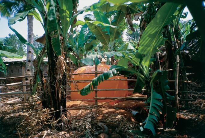 Superflex Biogas in Africa 1998
