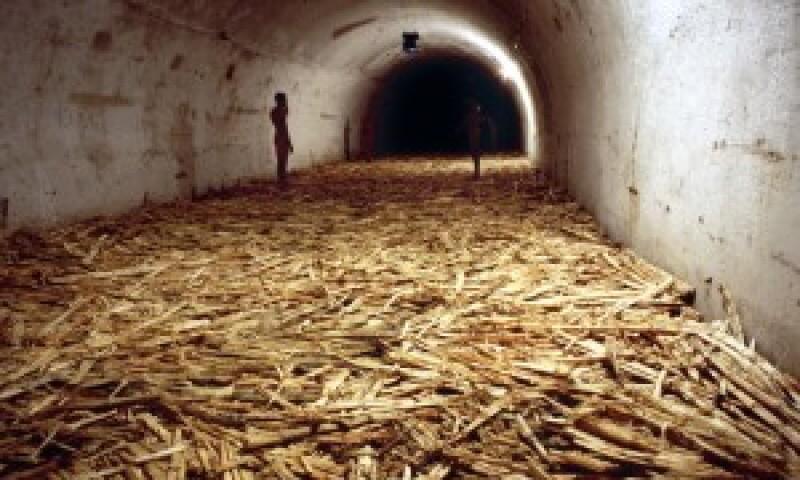 Installation View: Untitled (Havana, 2000)