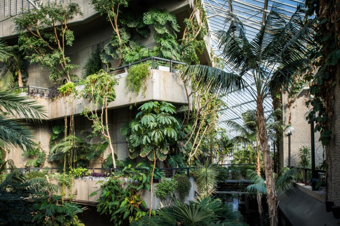 Conservatory, Barbican Centre.jpg