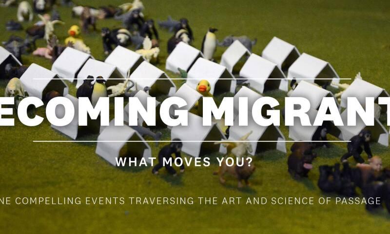 Carnegie_Becoming Migrant.jpg