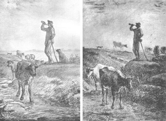 millet-cattle-2.jpg