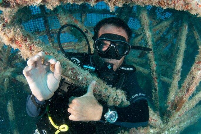 mikehorn-pangaea-expedition-10-usa-2011-8.jpg
