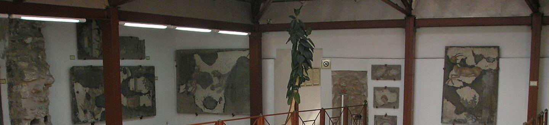 Buyuk Saray Mozaik Muzesi