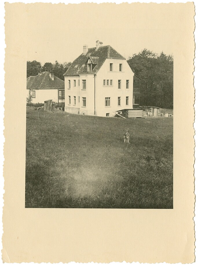 Elsa Koditschek's home at  Erzbischofgasse with a dog in the yard