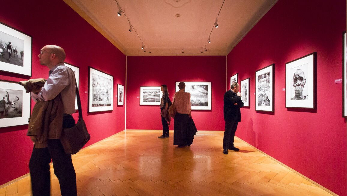 Interior View, Musée de L'Elysée