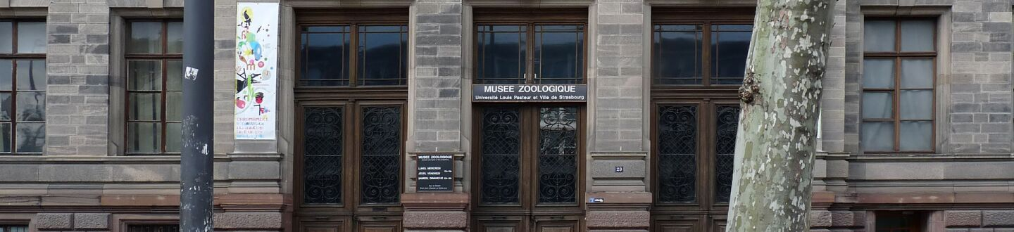 Exterior view of the Musée Zoologique in Strasbourg.