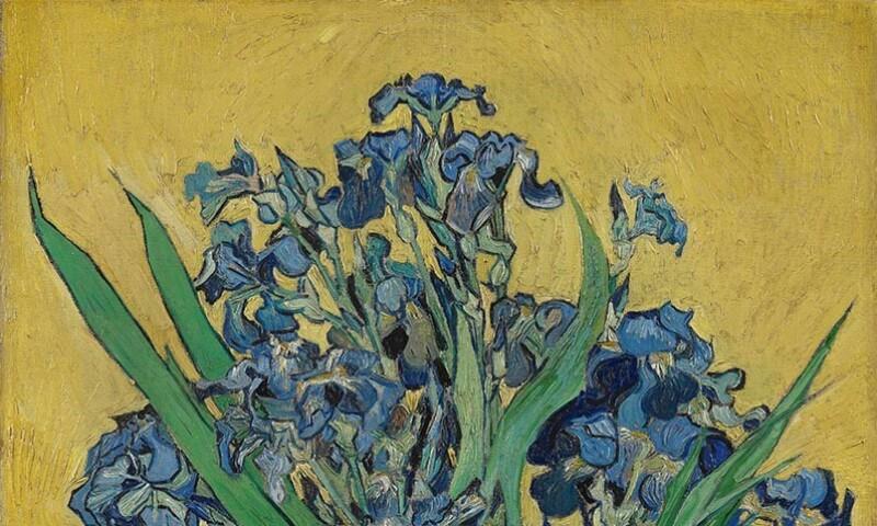 Van Gogh Irises.jpg