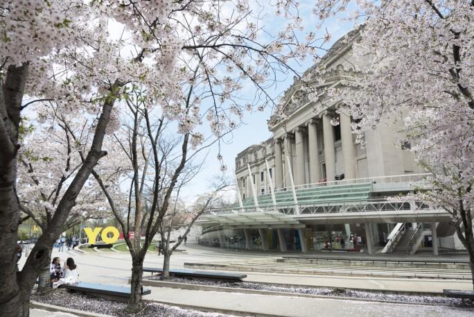 BKM_exterior_cherry_blossoms_20190415_DIG_01_Jonathan_Dorado_PS11.jpg