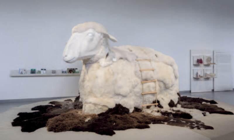 100 percent wool.jpg