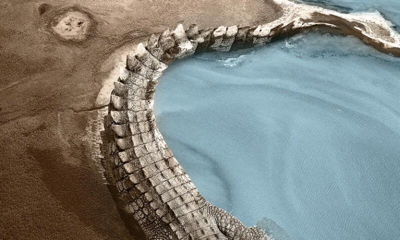 Gapu Monuk Saltwater 1020x500.jpg