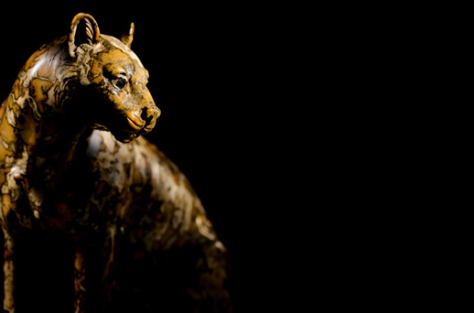 riahi-leopard-1.jpg
