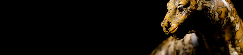 riahi-leopard-banner.jpg