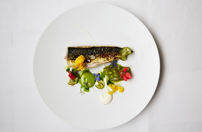 CORNISH MACKEREL, CUCUMBER KETCHUP, FROMAGE BLANC, WILD CUCUMBER, a dish available at Sotheby's restaurant.